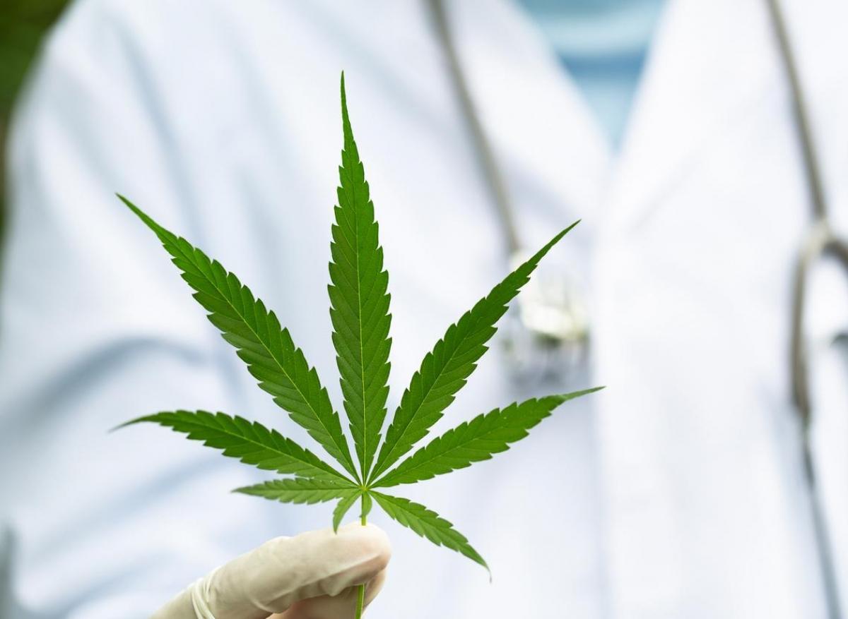 Cannabis thérapeutique : modalités pratiques de l'expérimentation qui débute en FRance