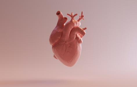 Insuffisance cardiaque : un nouveau traitement inotrope réduit le risque de réhospitalisations