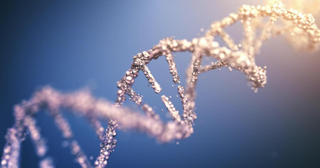 Fusions NTRK et cancers colorectaux : y penser chez les patients MSI, RAS/RAF sauvages