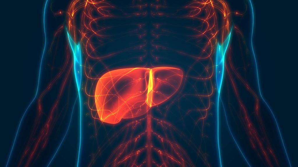 Cancers gastriques et colorectaux métastatiques HER-2+ : intérêt du trastuzumab-deruxtecan