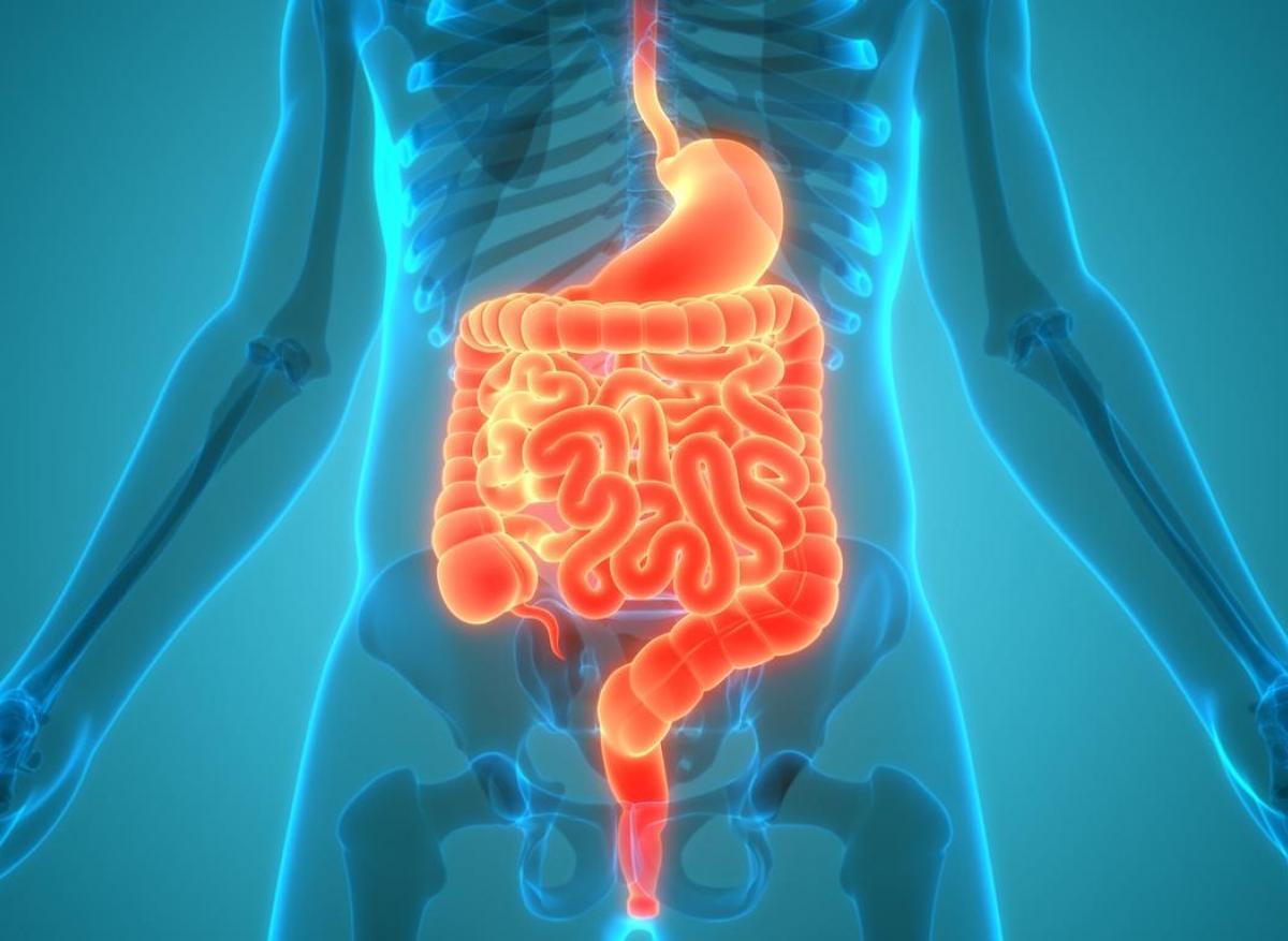 Cancer de l'estomac : augmentation inquiétante chez les moins de 40 ans