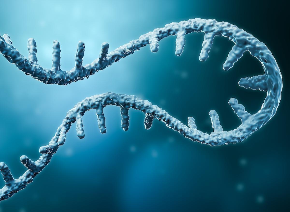 Vaccin contre le cancer : début des essais sur l'être humain avec le mélanome