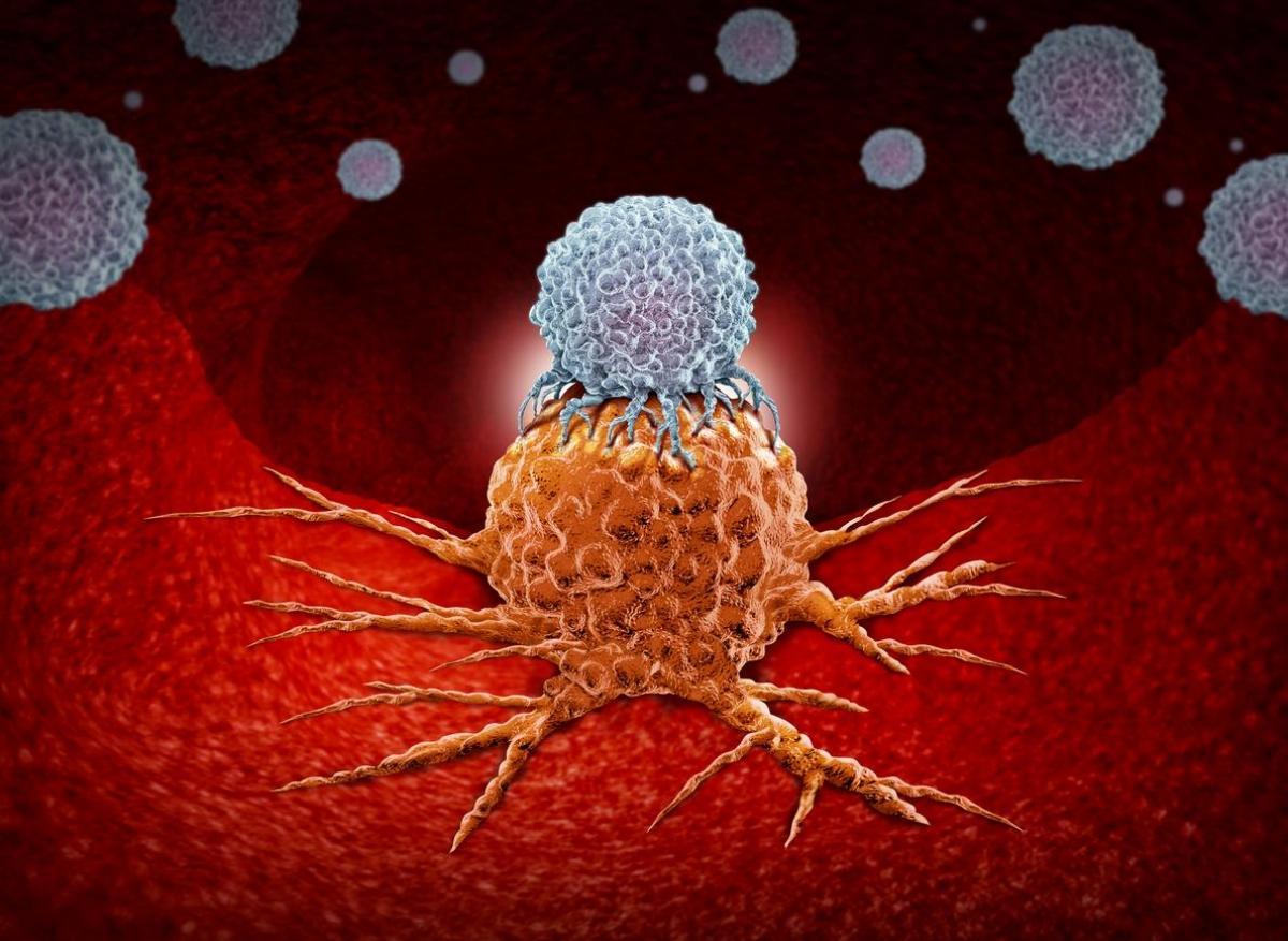 Immunothérapie : une révolution thérapeutique en devenir
