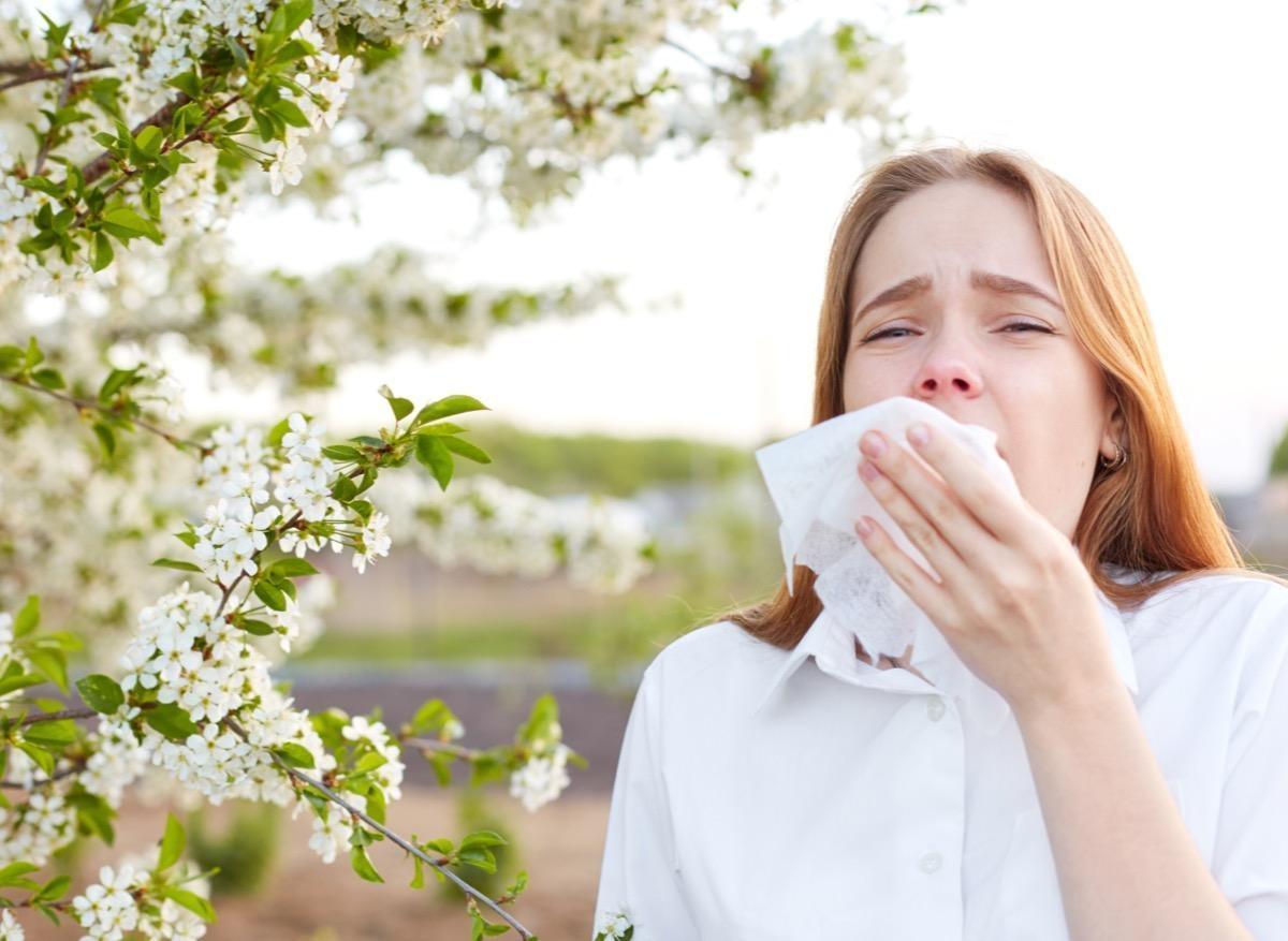 Allergie au pollen : des biomarqueurs pour prédire la gravité des symptômes