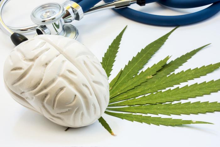 Cannabis thérapeutique : les cannabinoïdes feraient bien diminuer la douleur (mais pas comme on l'imaginait)