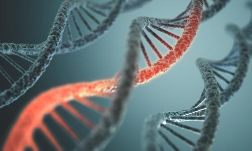 Cancer du poumon : 1er essai de thérapie génique par édition de gène