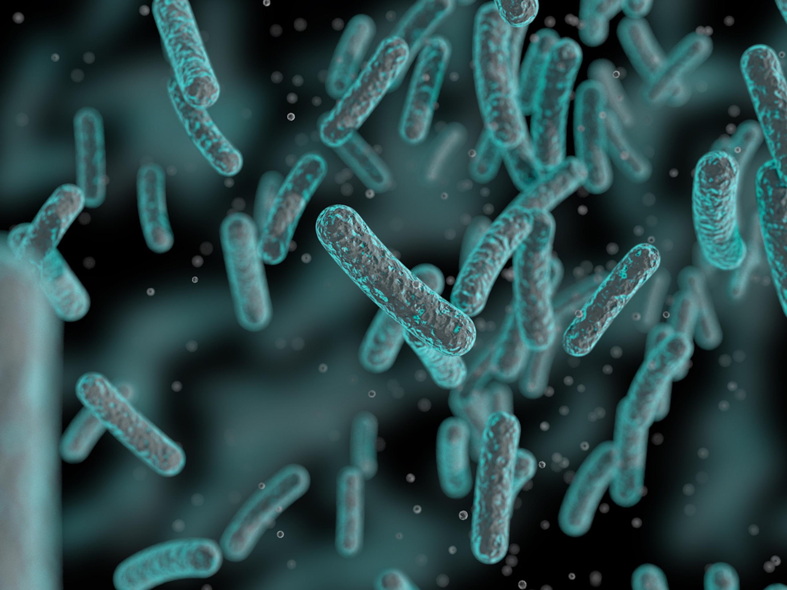 Antibiorésistance : une nouvelle molécule tue 5 super-bactéries résistantes