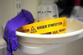 Epidémie de peste : faut-il en avoir peur ?