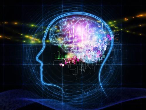 LSD : le recrutement de l'ensemble du cerveau