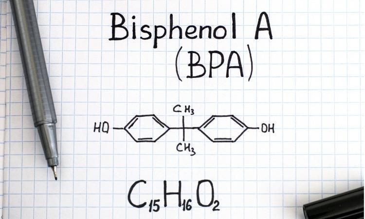Bisphénol A : l'exposition a des conséquences sur plusieurs générations