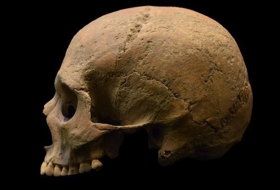Paludisme : il aurait contribué à la chute de l'Empire romain