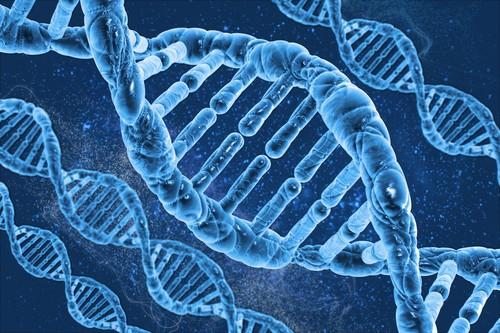 Dépression : l'importance du terrain génétique démontrée