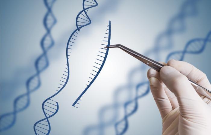 Myopathie de Duchenne: la CRISP permet de réduire la progression de la dystrophie musculaire