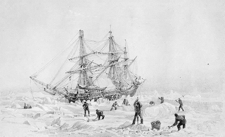 Maladie d'Addison : une des causes du drame de l'expédition Franklin