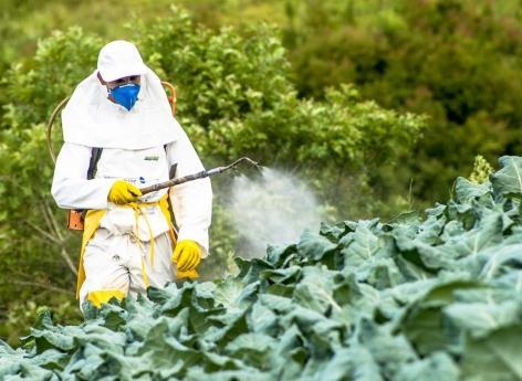 Autisme : lien avec l'exposition des fœtus et des nouveau-nés aux pesticides