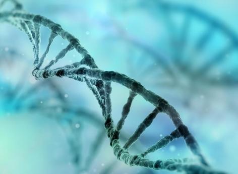 Cancer du sein : l'hérédité reste fondamentale pour le dépistage