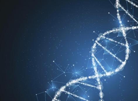 Autisme : des mutations de l'ADN non-codant seraient en cause