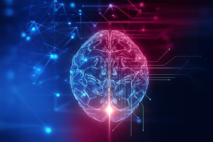 Ménopause : l'hormonothérapie préserve les structures cérébrales