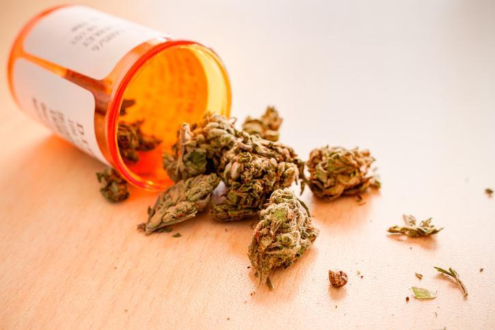Cannabis thérapeutique: le comité d'experts de l'ANSM favorable à sa légalisation