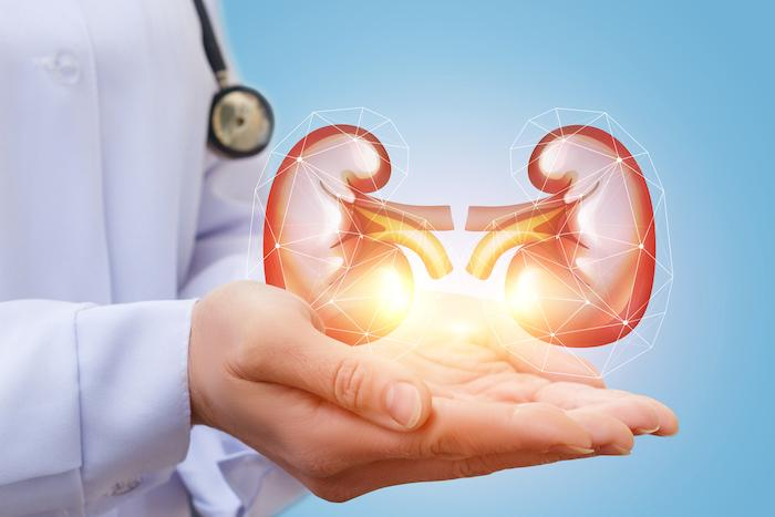Diabète de type 2 : le point de vue du néphrologue sur l'impact de l'insuffisance rénale