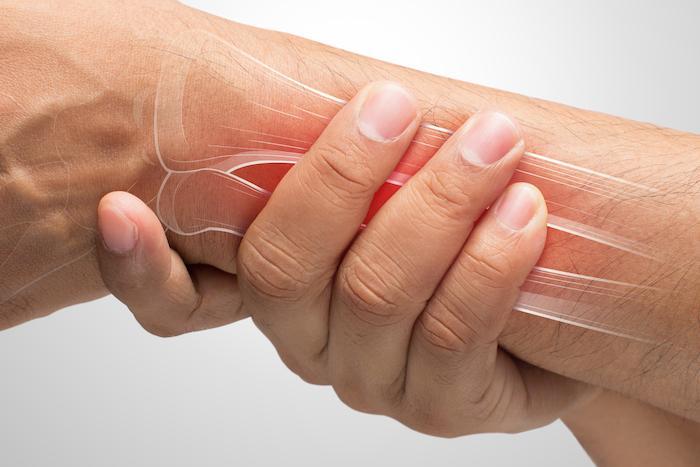 Ostéoporose : les probiotiques pourraient limiter la perte osseuse