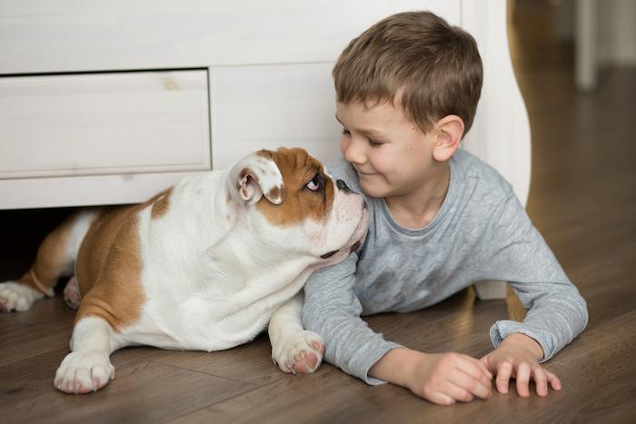 Asthme : un bon traitement permet le retour des animaux domestiques à la maison