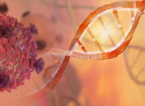 Cancer: le profilage ADN et ARN augmente le nombre de thérapies ciblées