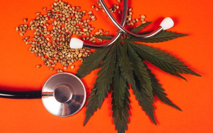 Des élus s'engagent pour le cannabis thérapeutique, mais sur quelles études se basent-ils ?