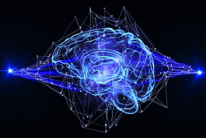 Intelligence : les bonnes connexions c'est mieux que beaucoup de connexion