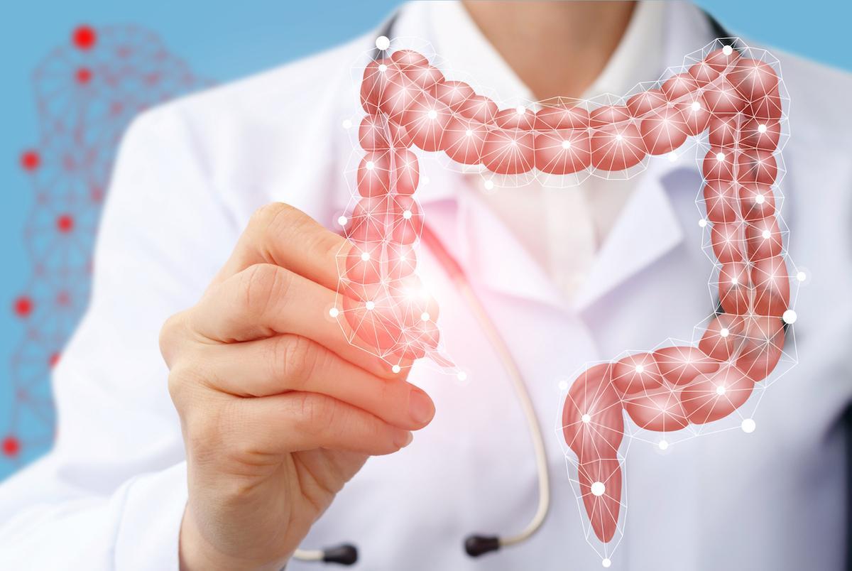 MICI : la modification du microbiote améliore l'inflammation et la régénération de la paroi