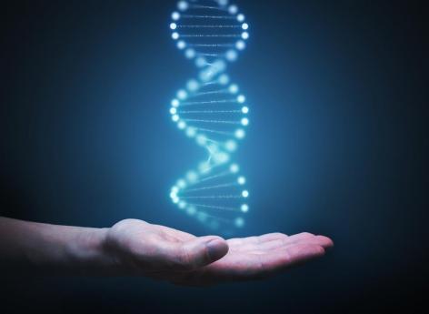 Maladie de Crohn : un test génétique contre les effets secondaires de la thiopurine