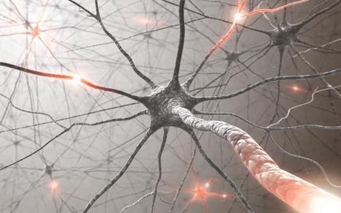 Autisme : une anomalie génétique explique les troubles