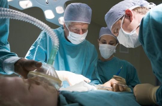 Don d'organes : le rein arrive en tête