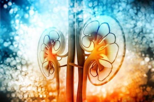 Carcinome rénal : une meilleure réponse avec le nivolumab et ipilimumab qu'avec le sunitinib