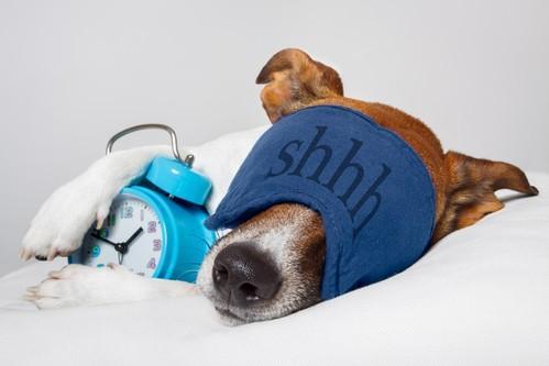 Voyages : pourquoi dort-on si mal la première nuit ?
