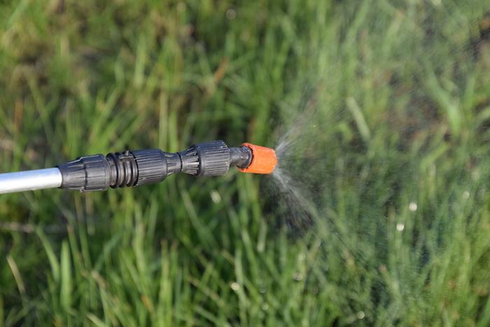 Glyphosate : Monsanto aurait établi un lien avec des cancers