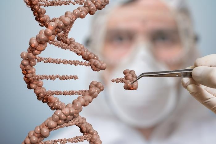 Maladies génétiques : la réparation facile à portée de main