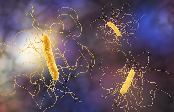 Résistance: un antibiotique modifié rendu 1000 fois plus efficace