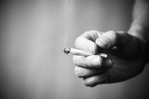 Cannabis synthétique : explosion des overdoses aux Etats-Unis