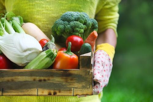 Ostéoporose : une alimentation \