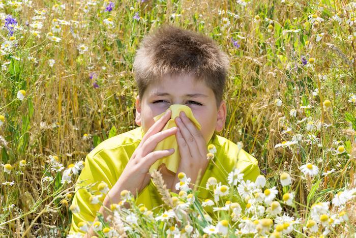 Asthme et allergies alimentaires les prédire dès l'âge de 1 an