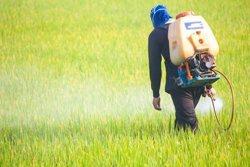 Perturbateurs endocriniens : un rapport accablant liste les dangers pour la santé et l'environnement