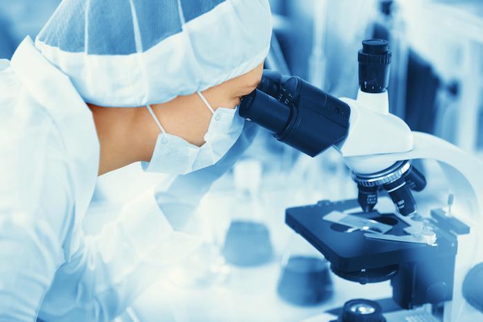 Ovules humains : un développement en laboratoire jusqu'à la maturité