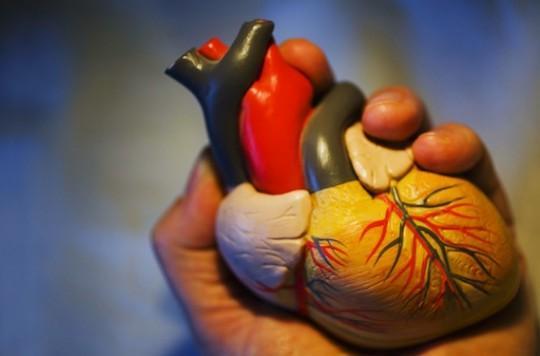 Cancer de l'enfance : réduction de la cardiotoxicité sur le long terme