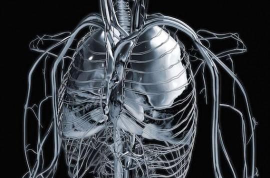 Cancer bronchique : l'immunothérapie améliore la survie